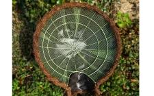 HH10underside - gardenature.co.uk