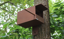 Kestrel Nest Box | gardenature.co.uk