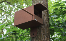 Wireless Kestrel Box Camera System