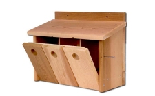 Sparrow Box | gardenature.co.uk