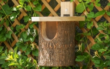 natural log robin box, gardenature.co.uk
