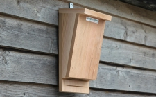 bat box single