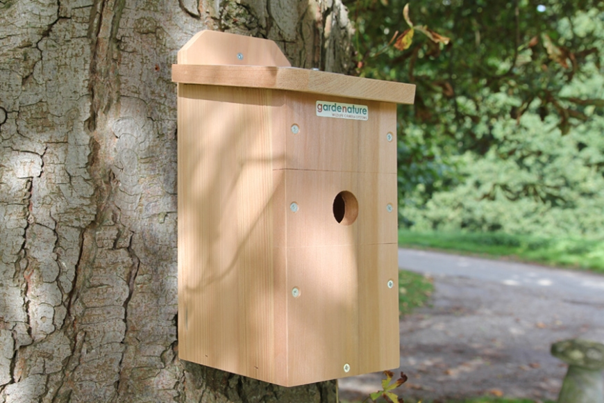 camera birdbox | gardenature.co.uk