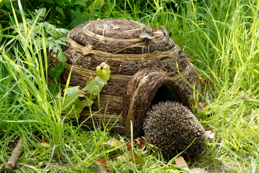 igloo hedgehog house - gardenature.co.uk