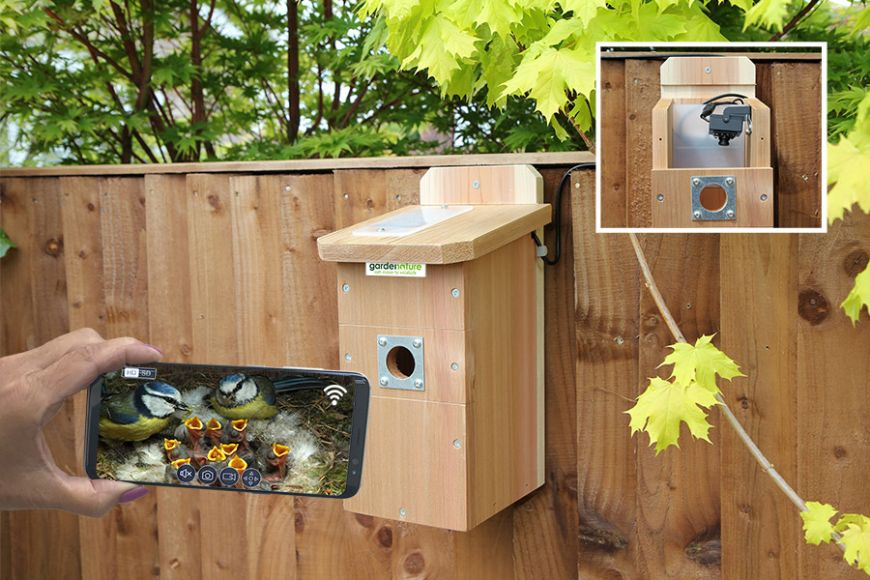 IP camera bird box | gardenature