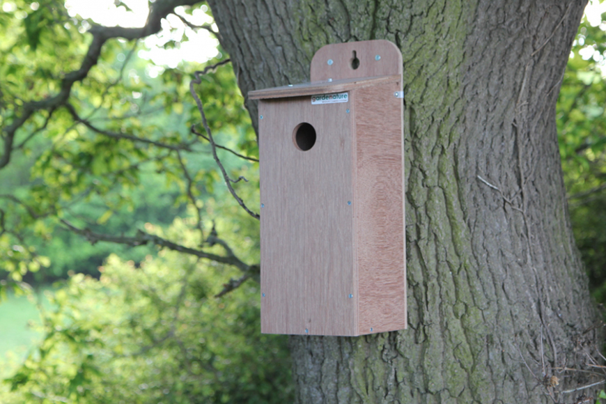 weatherproof starling box