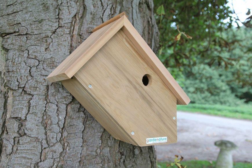 Side View Bird Box Camera