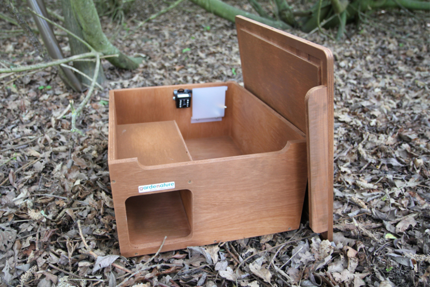 hedgehog box with camera
