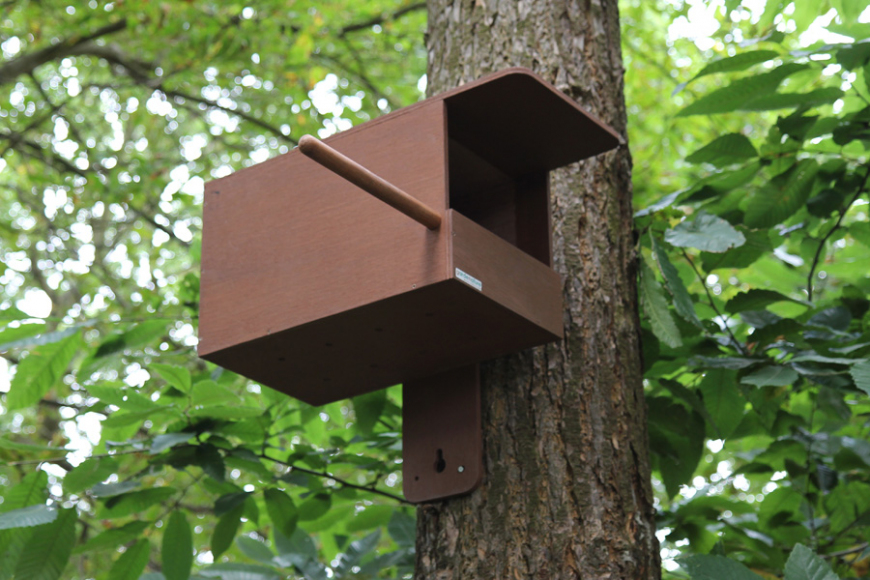 kestrel box | gardenature.co.uk