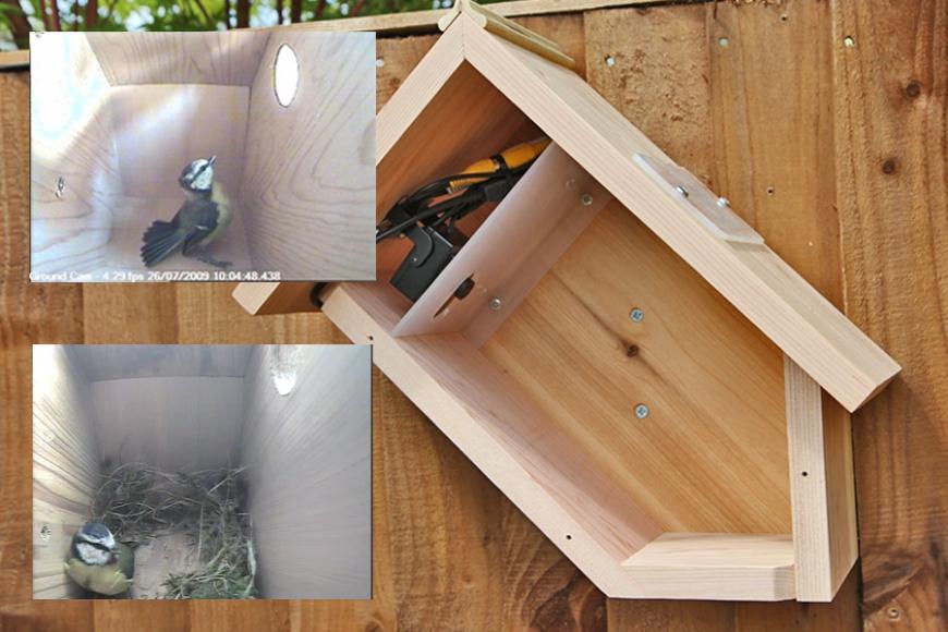 side view camera bird box   GN