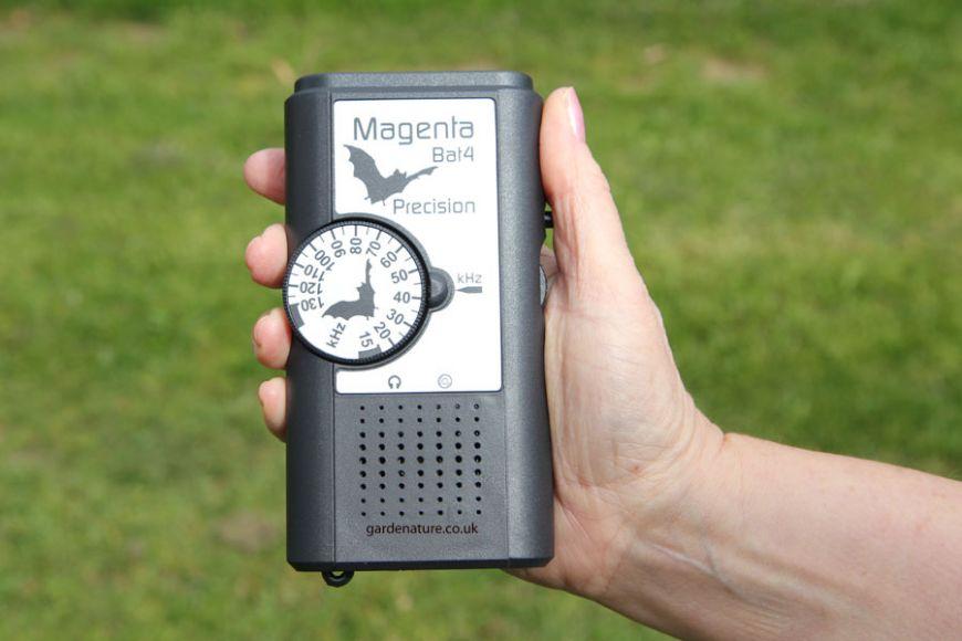 Magenta Bat detector 4 | gardenature