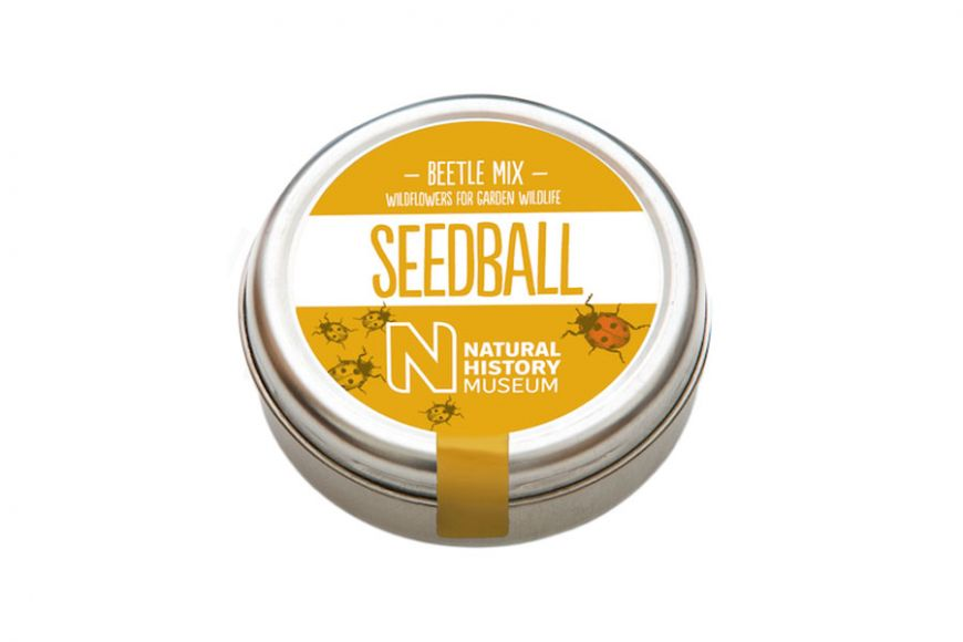 beetle seedball mix | gardenature