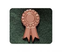 Bronze Rosette badge