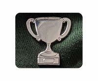 Silver Trophy badge
