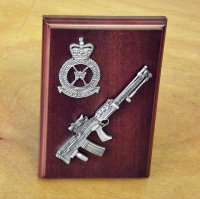 LSW Small Scale Weapon Plaque