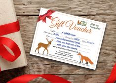 Gift Vouchers