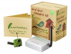 Green Feathers Wireless Camera Kit | Wild View Cameras