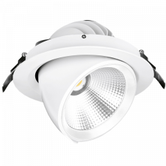 Aurora Enlite EN-RSP324/40 Apex 30W Adjustable LED Wallwasher Cool White
