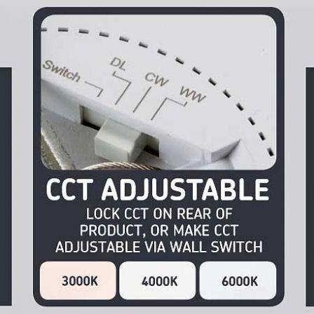 MLA CPL24CT 24 Watt Dual Mounting LED Panel CCT