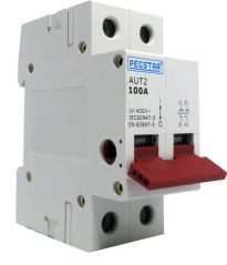 Pecstar AUT2 100A Main Switch 2 Pole