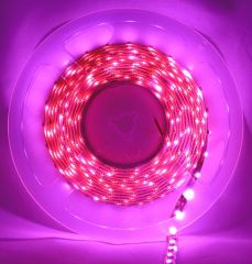 Pecstar LED Tape Single Colour 5m Pink 5050 60 LEDs Per Meter Waterproof