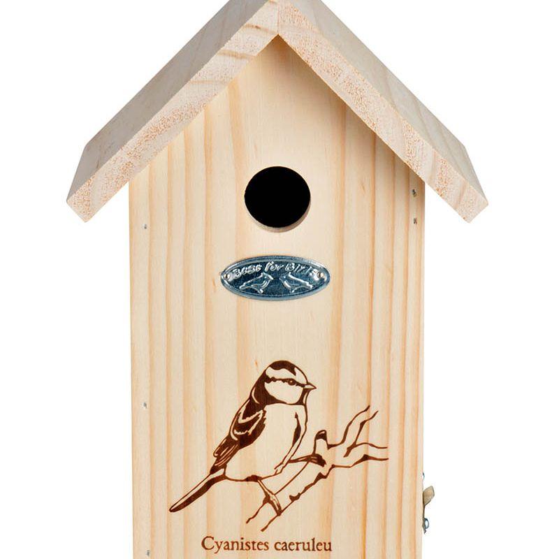 Blue Tits Bird Box