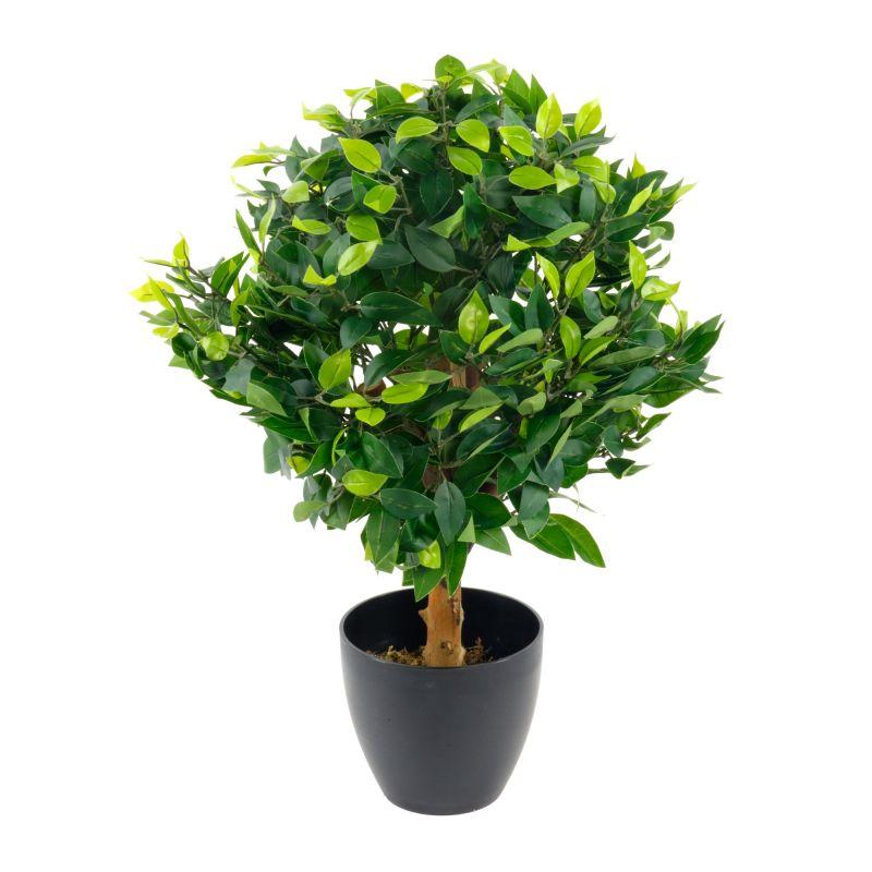 Artificial Medium 65cm Ficus Ball with Black Pot