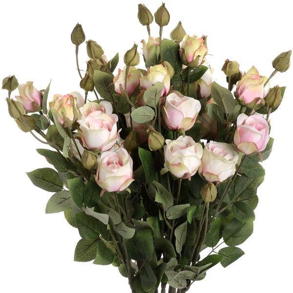 Cream Rose Stem