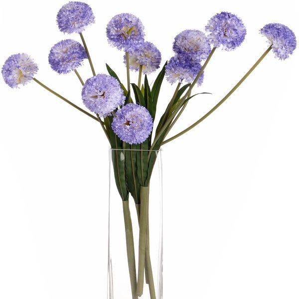 Lavender Pompom Dahlias