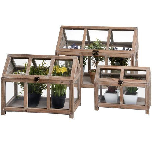 Set Of Three Wooden Plant Terrarium
