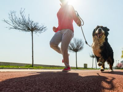 Exercises to do with your dog