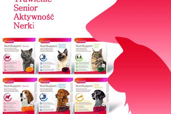NutriSupport - smaczne żelki wspierające zdrowie psów i kotów