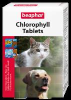 Chlorophyl Tablets