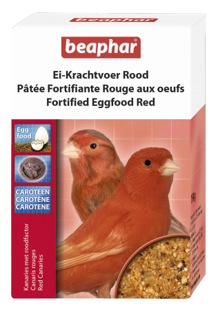 Fortified eggfood canary red