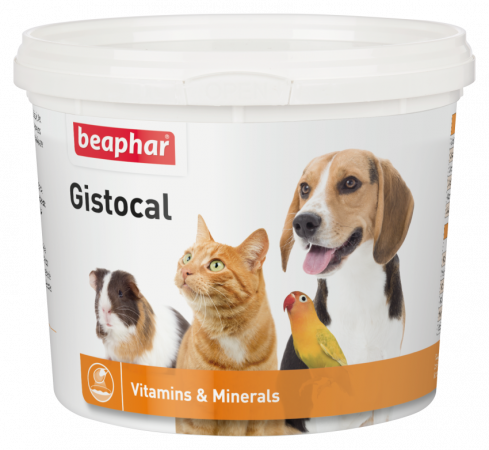 Gistocal - 500g - Dutch/French/English/Turkish