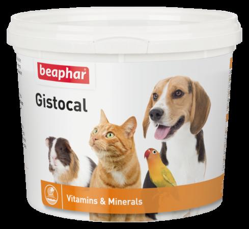 Gistocal - 500g - Dutch/French/English/Turkish