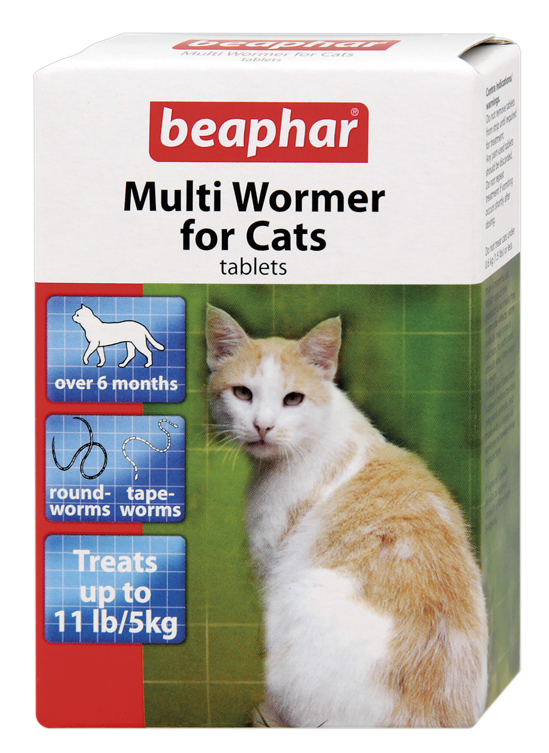 Cat Roundworms Treatment