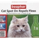 Bio Spot On Cat - 1 Vial - English