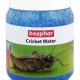 Cricket and Spider Water - 480g - English