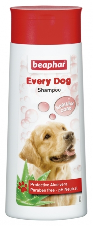 Bubbles Shampoo Universal - 250ml - English