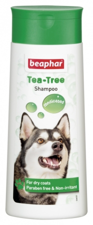 Tea Tree Shampoo - English