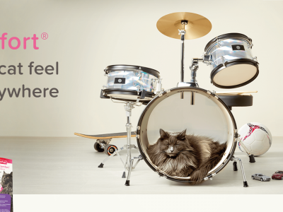 Help your cat feel at ease anywhere