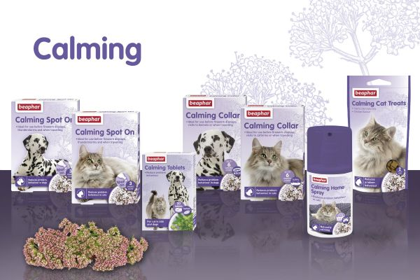 Calming range for cats and dogs