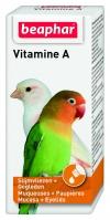 Vitamin A Bird