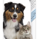 Tooth Gel for cats and dogs - English