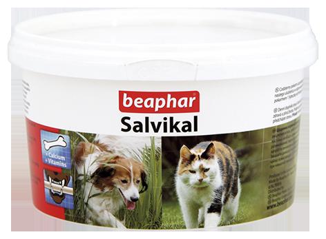 Salvikal