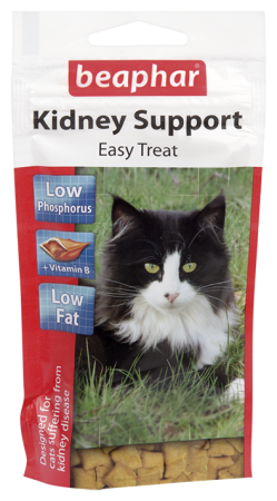 Kidney Bits - English