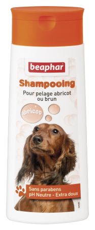 Bubbles Shampoo Brown Coat