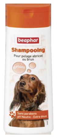 Bubbles Shampoo Brown Coat