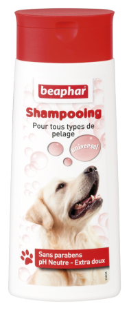 Bubbles Shampoo Universal - 250ml - French